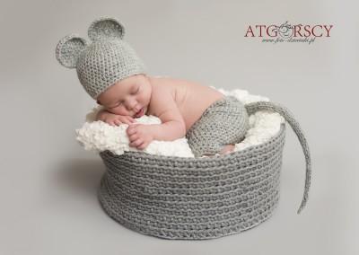 newborn_photography_1_20150316_1185651609